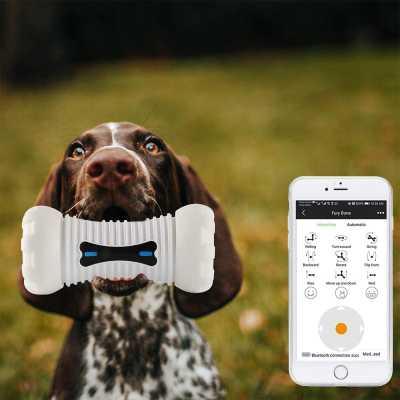 Fury Bone İnteraktif Akıllı Evcil Hayvan Oyuncağı - Thumbnail