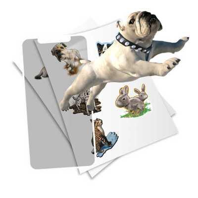 HoloToyz Sticker Pet Party AR Uyumlu Etiket - Thumbnail