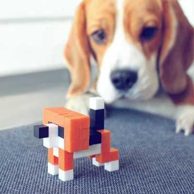 Pixio Orange Animals İnteraktif Mıknatıslı Manyetik Blok Oyuncak - Thumbnail