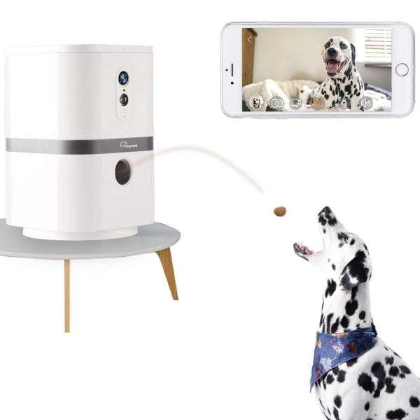 Petalk AI II Evcil Hayvan Kamerası